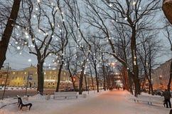 Lekkie iluminacje na drzewach zdjęcia royalty free
