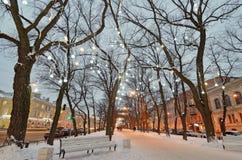Lekkie iluminacje na drzewach zdjęcie royalty free