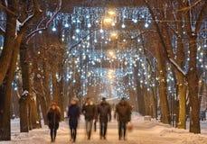 Lekkie iluminacje na drzewach fotografia stock