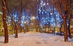 Lekkie iluminacje na drzewach obrazy royalty free
