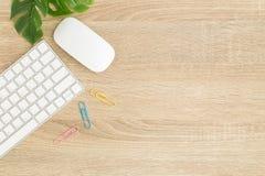Lekmanna- foto för lägenhet av kontorsskrivbordet med musen och tangentbordet, bästa sikt Royaltyfri Foto