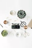 Lekmanna- kvinnlig workspace för lägenhet med suckulenten Royaltyfri Foto