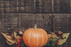 lekmanna- lägenhet för kort för halloween eller tacksägelsebegreppshälsning _ Arkivfoto