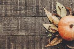 lekmanna- lägenhet för kort för tacksägelse- eller halloween begreppshälsning Beauti Arkivfoto