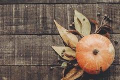 lekmanna- lägenhet för kort för tacksägelse- eller halloween begreppshälsning Beauti Royaltyfri Bild