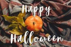 Lekmanna- lycklig lägenhet för halloween texttecken höstpumpa med colorfu Arkivfoton