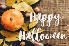 Lekmanna- lycklig lägenhet för halloween texttecken pumpa med sidor och wal Arkivbilder
