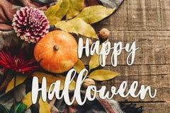 Lekmanna- lycklig lägenhet för halloween texttecken pumpa med sidor och waln Royaltyfria Foton