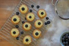 Lekmanna- mat för lägenhet med ny bakad kakor och frukt royaltyfri fotografi