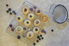 Lekmanna- mat för lägenhet med ny kakor och frukt arkivbilder