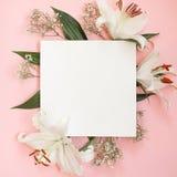 Lekmanna- sammansättning för dekorativ lägenhet med blommor Lekmanna- lägenhet, bästa sikt på rosa bakgrund Copytext royaltyfri bild
