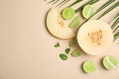 Lekmanna- sammansättning för lägenhet med melon, limefrukt och utrymme royaltyfri fotografi