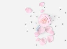 Lekmanna- vitlägenhet Top beskådar Mars 8th Internationell dag för kvinna` s Pibackground Vit vas, vit påse, röda rosor på vit ba Royaltyfria Foton