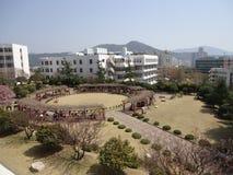 Lekplats i Korea Royaltyfri Fotografi