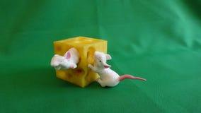 Leksak för barn på en grön bakgrund Två mouses med ost royaltyfria bilder