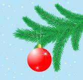 Leksak som en boll hänger på filialgran-träd Royaltyfri Bild