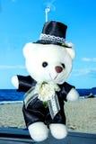 Leksakbjörn brudgummen Royaltyfria Bilder