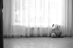 Leksakbjörn i fönstret Arkivfoto