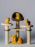 Leksakbjörnar på stolar Fotografering för Bildbyråer