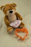 Leksakbjörnen och morötter sned hjärta, Arkivbilder