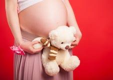 Leksakbjörngröngöling mot en mage av gravida kvinnan Gravida kvinnan med en leksakbjörngröngöling går på en äng Arkivfoto