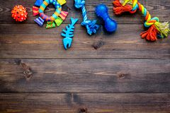 Leksaker för husdjurhund och katt Gummi- och textiltillbehör på mörkt träutrymme för kopia för bästa sikt för bakgrund Arkivfoton