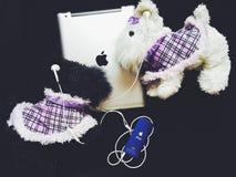 Leksaker och iPod Royaltyfri Fotografi