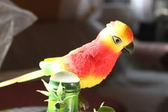 Leksakfågel flera färger royaltyfri bild