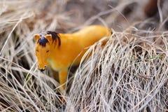 Leksakhäst i naturen som fotograferas som verklig bland fotografering för bildbyråer