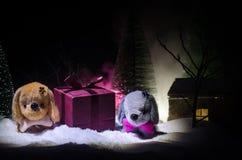 Leksakhund - ett symbol av det nya året under snön mot bakgrunden av gran förgrena sig Leksaks hund som ett symbol av 2018 nya år Royaltyfri Foto