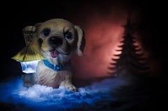 Leksakhund - ett symbol av det nya året under snön mot bakgrunden av gran förgrena sig Leksaks hund som ett symbol av 2018 nya år Arkivbild