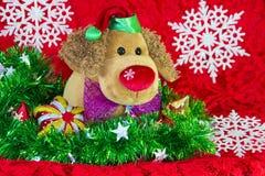 leksakhund för nytt år som omges av dekorativa julbeståndsdelar och granfilialer på röd bakgrund Arkivbild