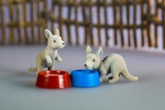 Leksakkängurur bredvid bunken Royaltyfri Foto