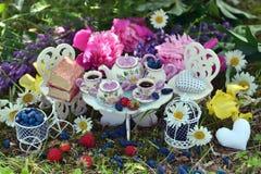 Leksakteservis, litet möblemang, bär och blommor på gräset Royaltyfria Foton