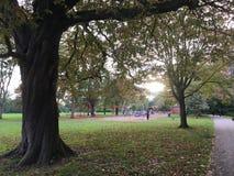 Lekutrymmesikt, barn som spelar i Leamington Spa, UK royaltyfri foto
