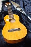 Lele de guitare Image stock