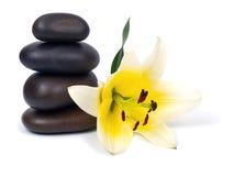 Lelie en stenen Stock Afbeelding
