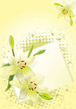 Lelie, vectorgrunge bloemenachtergrond royalty-vrije illustratie