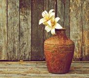 Lelies in een vaas op hout. Stock Foto