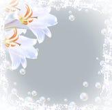 Lelies en bellen stock illustratie