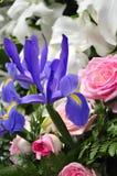 Lelies en irissen 2 Stock Foto's
