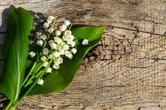 Lelietje-van-dalenbloemen op houten achtergrond Royalty-vrije Stock Fotografie