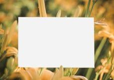 Lelietje-van-dalenkader met roze lelies - horizontale het document van de liefdebrief achtergrond stock fotografie