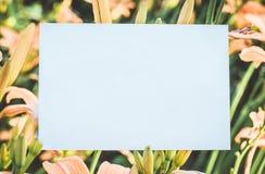 Lelietje-van-dalenkader met roze lelies - horizontale het document van de liefdebrief achtergrond royalty-vrije stock afbeelding