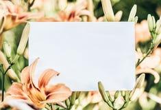 Lelietje-van-dalenkader met roze lelies - horizontale het document van de liefdebrief achtergrond royalty-vrije stock afbeeldingen