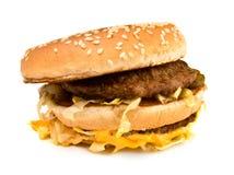 Lelijke vette sandwich royalty-vrije stock fotografie
