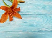 Lelui lata piękna pomarańczowa dekoracja błękitny drewniany rocznika communion Zdjęcia Royalty Free
