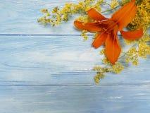 Lelui lata piękny pomarańczowy wystrój retro błękitny drewniany rocznika communion Zdjęcia Royalty Free