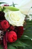 leluj zamknięte róże up biel Zdjęcia Stock