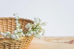 Leluja dolina kwitnie bukiet w drewnianym koszu fotografia stock